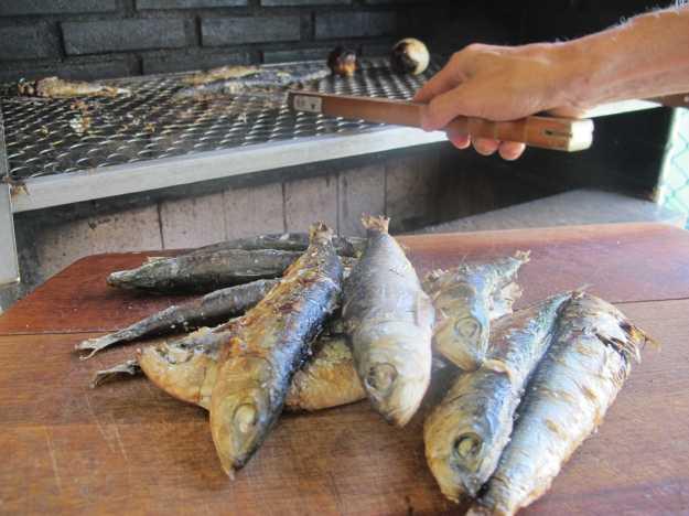 Sardinhas portuguesas feitas na brasa.. Azeite e carvão... Precisa de mais o que?